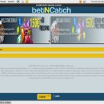 Bet N Catch Tips