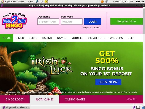 Play2win Bingo Spins Free