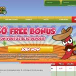 Bingogringo Free Account