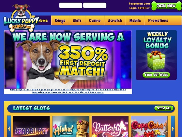 Luckypuppybingo Free Bet Rules